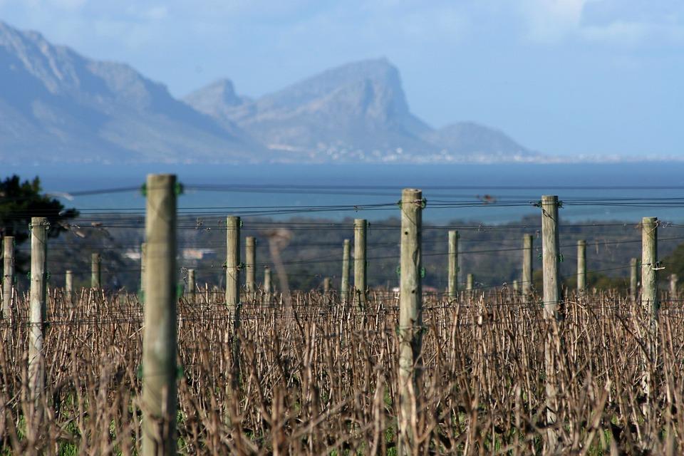 route vignoble afrique du sud