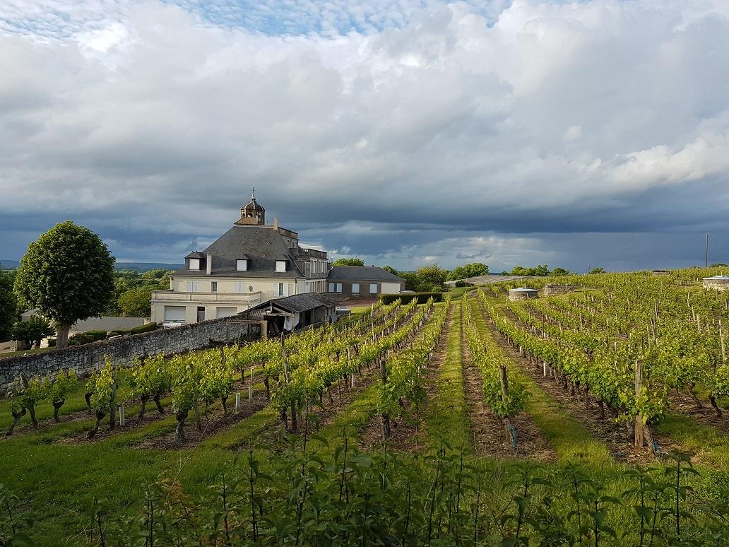 route des vins de la Loire